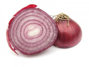 Onion red cross section isolated in white studio